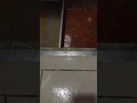 thông tắc đường ống nước thải  tại Hà Nội - 0981. 287. 998 - YouTube
