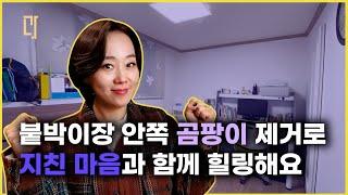 (Eng Sub)[유료광고]곰팡이 핀 집에서 살아남기 …