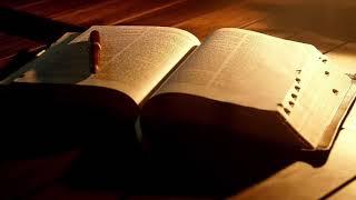 성경 통독(티모테오에게 보낸 둘째 서간 1-4) - 잠…