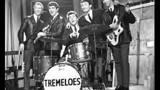 Here Comes My Baby Tremeloes Drummer Life Story Interview Dave Munden