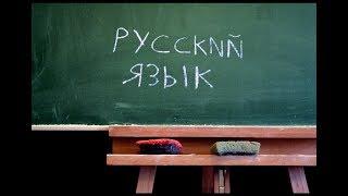 Как помочь ребенку хорошо учиться по русскому языку | Обзор книги | Занимательные задания | Школа