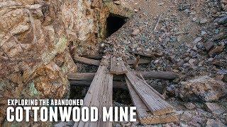 The Abandoned Cottonwood Mine  NV