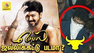ஜல்லிக்கட்டு படமா ?   MERSAL - Vijay 61 First Look has a Jallikattu connection?