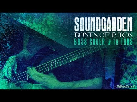 """Bones of Birds"" - Soundgarden 