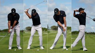 """""""Tiger Woods"""" Perfec…"""