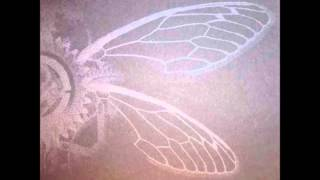 Irisblind-The Beating of a Billion Locust Wings