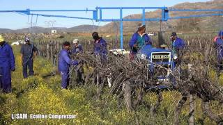 Lisam Ecoline Compressor  from Italy /  Wild Rush Distributors CC     Length  min