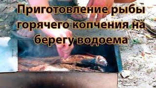 Как правильно и быстро приготовить рыбу горячего копчения(Простой рецепт приготовления рыбы. Коптим рыбу просто и быстро прямо на берегу водоема., 2015-08-14T10:40:11.000Z)