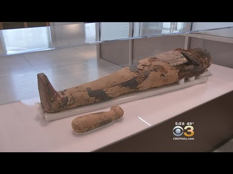Inside Look At Penn Museum's New Ancient Egypt Display