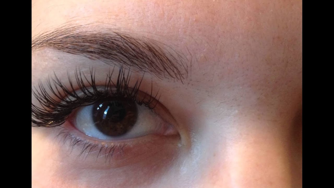 Full Set Of Synthetic Eyelash Extensions Lush N Lash Burlingame Ca