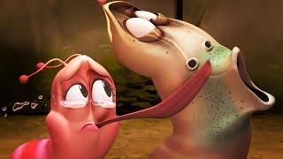 LARVA - LOOK into my EYES | Cartoon Movie | Cartoons For Children | Larva Cartoon | LARVA Official