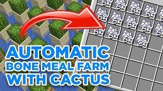 Tutorial Automatic Bone Meal Farm With Cactus Minecraft Gd Venus Youtube