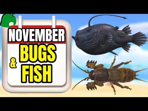 November Bugs & Fish Guide   Animal Crossing New Horizons (Northern Hemisphere)
