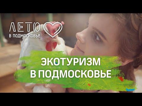"""""""Лето в Подмосковье"""". Экоферма, парное молоко и экотуризм"""