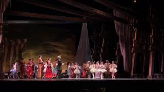 Polina Semionova & Michal Krcmar Don Quijote curtain call