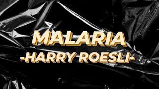 ANALISA LAGU MALARIA - HARRY ROESLI
