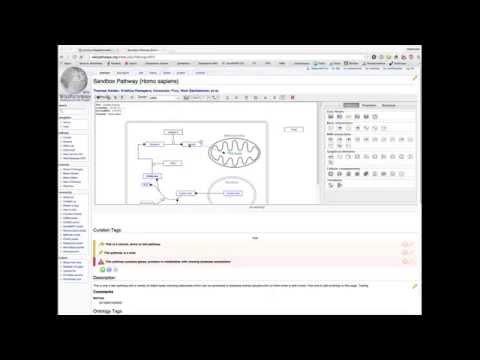 WikiPathways Java Applet Editor: Chrome - Enable NPAPI