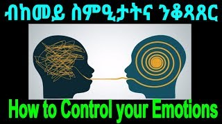 Gambar cover 5 Steps to improve your Emotional Intelligence