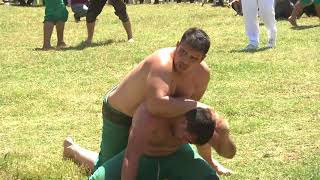 İsmet Atlı Karakucak Güreşleri'nde Ali Rıza Kaya Baş Pehlivan