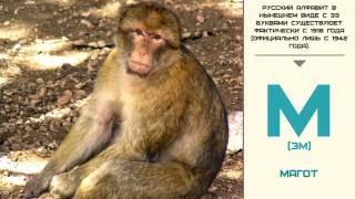 Мир малышам   Развивающие видео для детей   Русский алфавит: Буква М