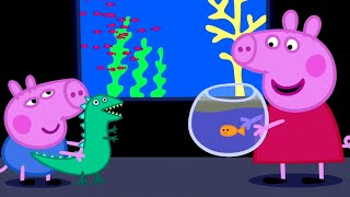 Peppa Pig Official Channel | Peppa Pig Visits the Aquarium