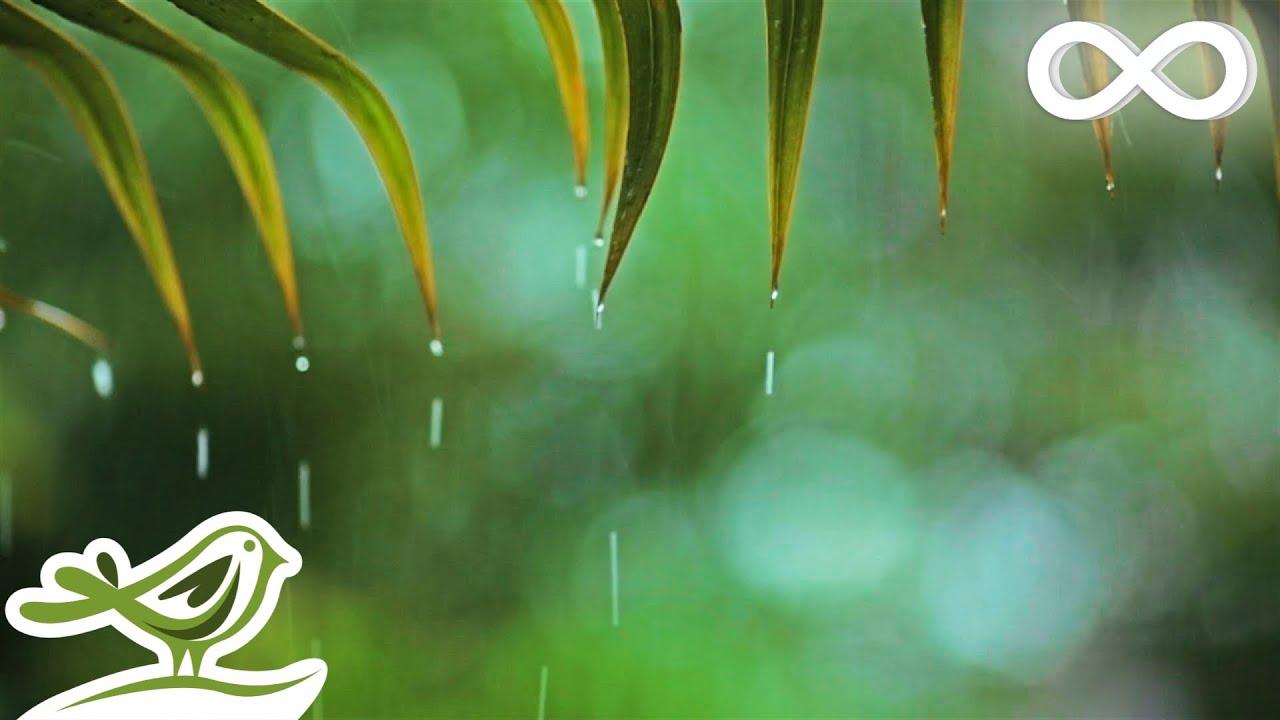 Relaxing Music Rain Sounds Beautiful Piano Music