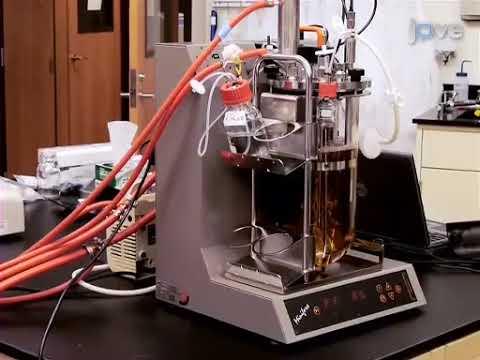 Operation Of A Benchtop Bioreactor