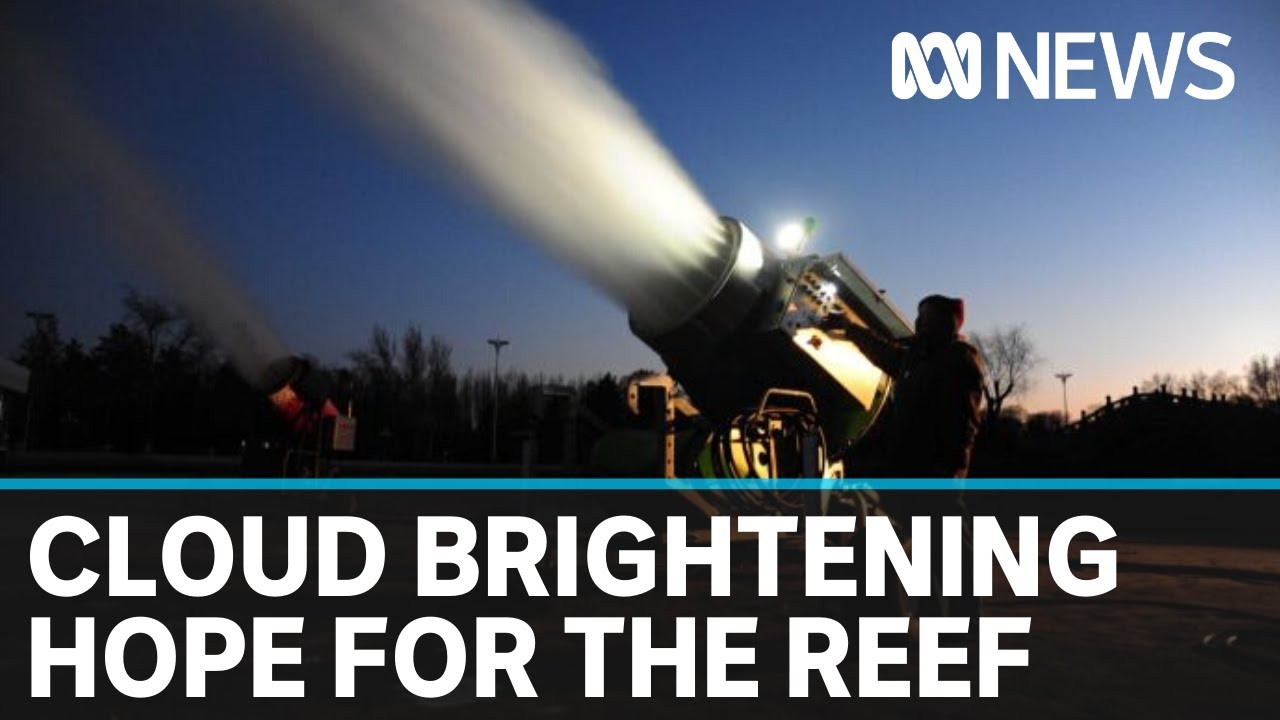 Great Barrier Reef coral bleaching to be tackled in cloud-brightening experiment | ABC News – ABC News (Australia)