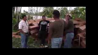 UN BOSQUE PARA LA VIDA. Manejo forestal en la Comarca Emberá Wounaan
