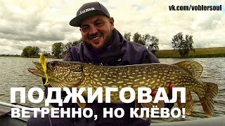 Ловля щуки і окуня восени. Джиг на озері. Спінінг з човна. Відео звіт від 10 вересня 2017.