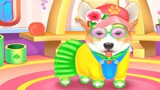 Cute Corgis Caring and Dressup Colours for Kids Animation Education Cartoon Compilation