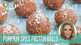 No Bake Pumpkin Spice Recipe Protein Treats By Nutracelle
