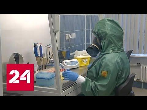 Зарегистрирован российский тест на коронавирус - Россия 24