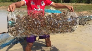 How to Make Crab & Fish Trap By Electric Fan  - cooking Crab