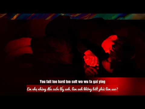 [VIETSUB + PINYIN LYRICS] Dịch Dương Thiên Tỉ - FALL 🍂🍂🍂🍁🍁