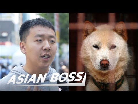 Do All Koreans Really Eat Dog Meat? (Street Interview) | ASIAN BOSS