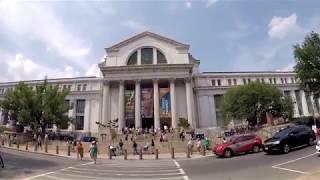 National Museum of Natural History (Washington, D.C.)
