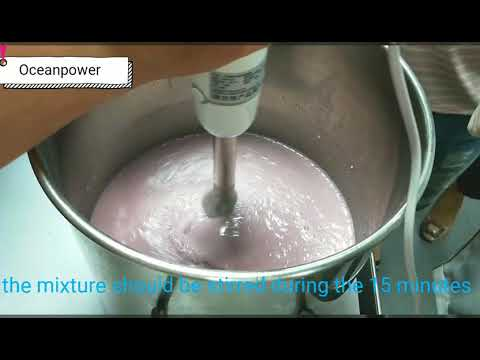How To Make Soft Ice Cream  By Using Oceanpower OP132BA