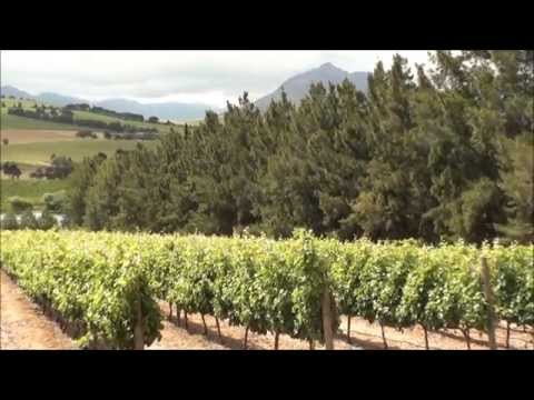 Cape Town and the Wine Regions of South Africa