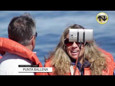 PUNTA BALLENA · AVISTAJE DE BALLENAS · PUERTO PIRÁMIDES · CHUBUT