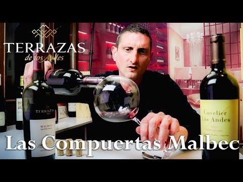90 Year Old Vines Malbec Las Compuertas Argentina Wine