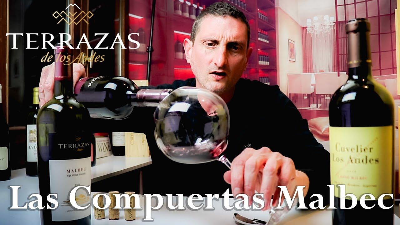 90 Year Old Vines Malbec Las Compuertas Argentina Wine Review By Terrazas De Los Andes