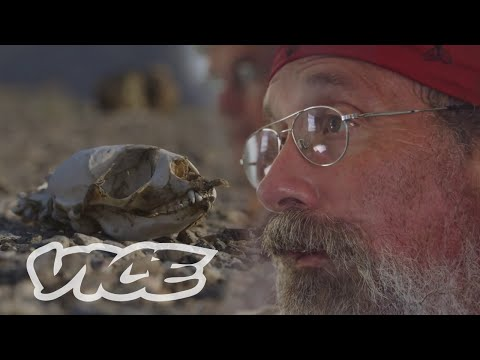 Polar Bear Man Returns to the Arctic: VICE Reports (Part 1)