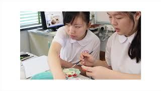 Publication Date: 2019-05-28   Video Title: ▲ [ HKCWCC ] 5Y4 Art Exhibitio