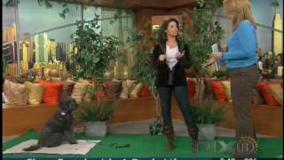 Train Your Dog Month On Wpix News 1-21-10