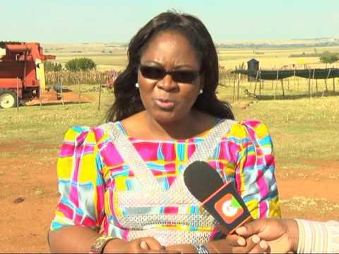 SOUNTH AFRICA ISAAA DOCUMENTARY ON GMO