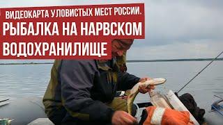 Рыбалка на Нарвском водохранилище Видеокарта уловистых мест России