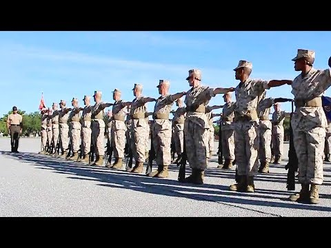 A Journey Through Marine Corps Boot Camp - Week 12
