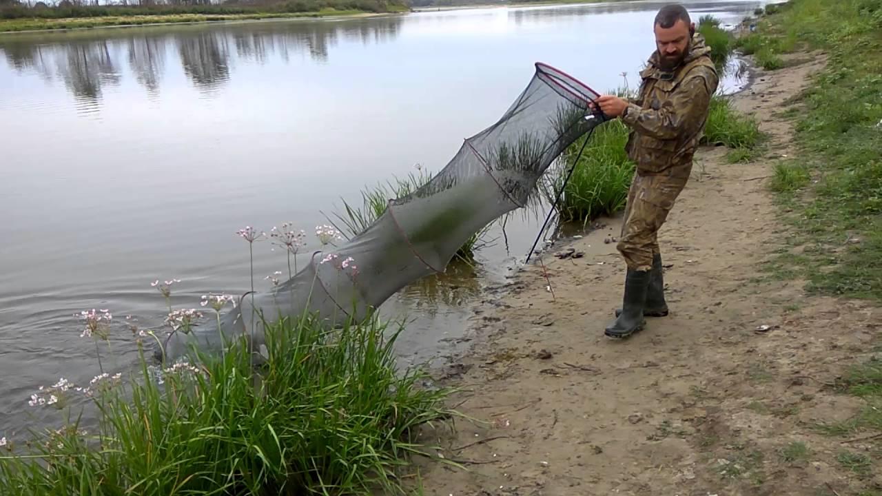 Отдых рыбалка на реке припять