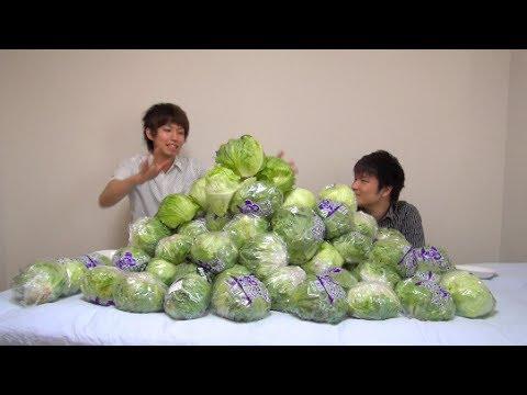 レタス100玉食ってみた I eat 100 lettuce